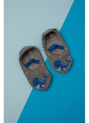 Katia & Bony Yunus Desenli Bebek Görünmez Çorap - Gri Gri
